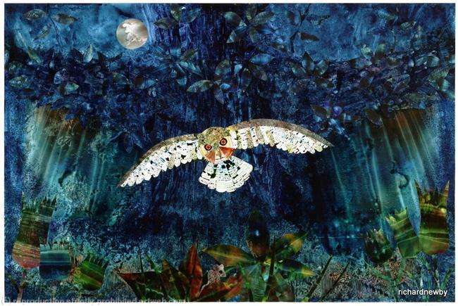 Midnight Owl Acrylic collage width=