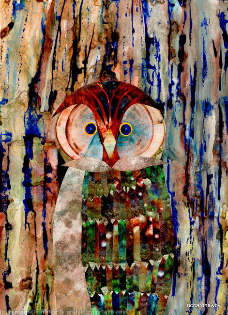 Wise Owl? Acrylic collage width=