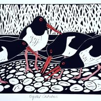 hidden Oyster catchers