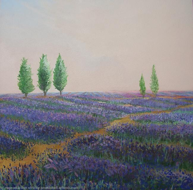 Lavender Waves Oil on Canvas 55x55cm