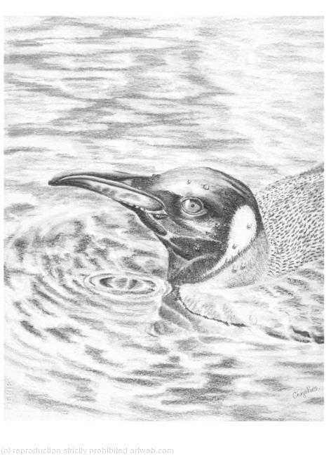 THE WATERS LOVELY GRAPHITE 23x28cm