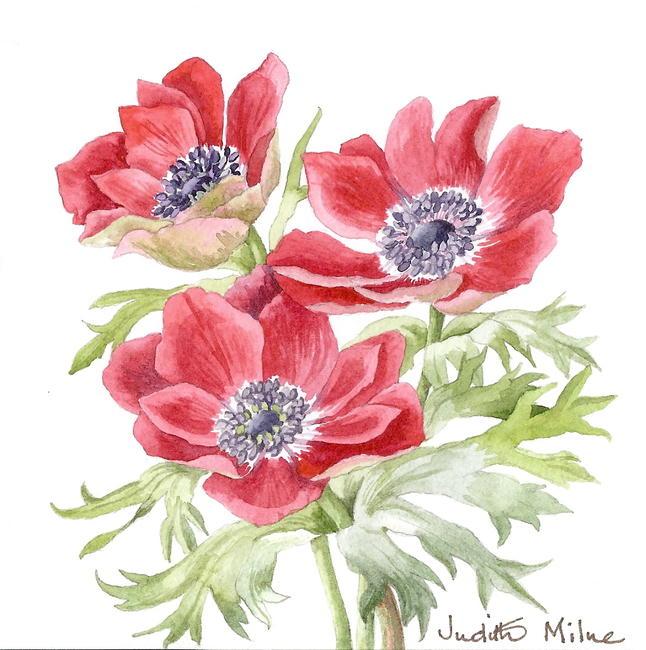 Red Trio watercolour 5x13cm