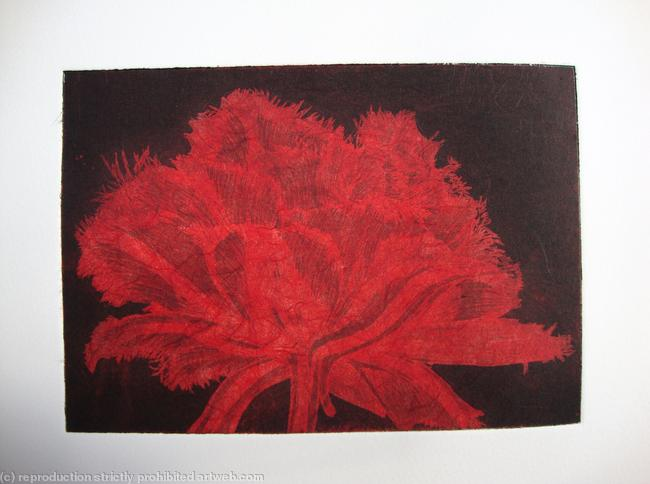 Cool Cystal Aquatint Etching Red Aquatint Etching itemprop=