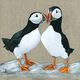 Puffins - Sweethearts