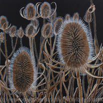 hidden Teasels, Original watercolour…