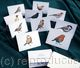 Notelets with prints of my artwork of garden birds of your choice and your name and address on the back . Pack of 10