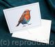 Notelet or greeting card with a print of one of my  paintings of garden birds. ( Any bird available on request)