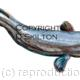 Eel painting as a greeting card or bespoke notelet image. Prints and postcards available. We also produce fishing record cards for day fishing, tuition and other records needed by anglers and pools etc.