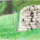 Drystone Wall and Fence