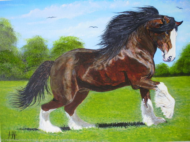 paint clydesdale - photo #23