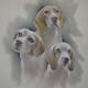 3 Beautiful Beagles  SOLD  Commissioned