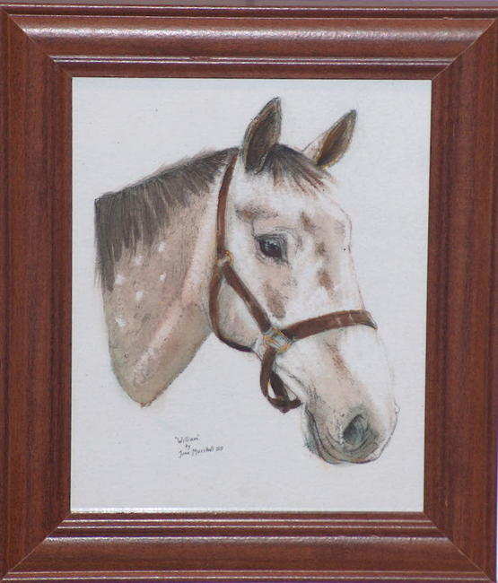 "Portrait of Horse ""Willian"" Watercolour on heavy watecolour paper 20x30cm"