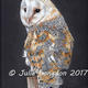 Perching Barn Owl